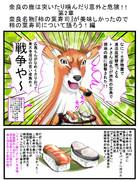 奈良観光楽しかったので奈良名物『柿の葉寿司』について語ろう。