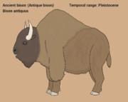 Extinct mammal 1