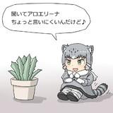 アロエの鉢植えに話しかけるマヌルネコちゃん