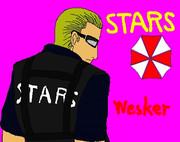 STRS ウェスカー