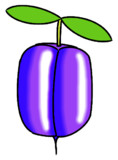 Purple apple-berry
