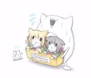 八丈猫と石垣猫を勧める深海浮き輪
