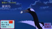 【怪奇カード-その175】羅刹鳥(らせつちょう)