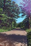 裏磐梯スキー場への径
