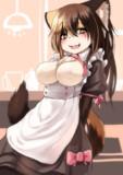 ケモセーフを利用したおっぱい丸出しメイド服を三毛猫ちゃんに着てもらった