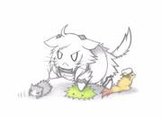 提督たちと戯れる北方棲妹猫