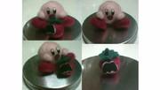 羊毛フェルト+αでカービィとマキシマムトマト