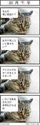 猫に聴いてみた(アイドルマスター編)