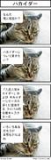 猫に聴いてみた(特撮編)