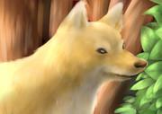 リクエストでかいた狐さん