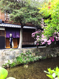 京都で一枚