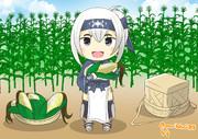 神威とトウモロコシ畑