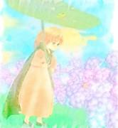 雨の散歩道