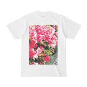 シンプルデザインTシャツ Azalea 1