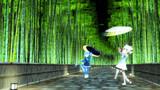青龍と白虎~竹林の道~