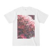 シンプルデザインTシャツ ピンク木
