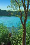 美しい水面の弁天沼