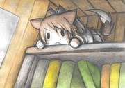 観察する敷波猫