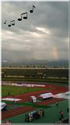 スタジアムで虹その2