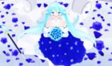 青色のバラの奇跡