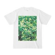 シンプルデザインTシャツ 生垣の雑草達