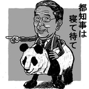 中国嫌いだけどパンダと選挙が大好きです。