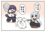 猫うきわと暁響