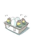 づほ(朝どれ新鮮卵)