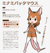 【地味すごオリフレS】ミナミバッタマウス