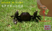 【夏休み特集・雑コラで雑学】モクズガニの昔話