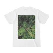 シンプルデザインTシャツ 黒松