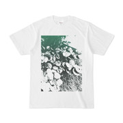 シンプルデザインTシャツ ザッソー