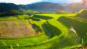 【イラスト風】里山の背景画像