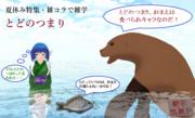 【夏休み特集・雑コラで雑学】とどのつまり