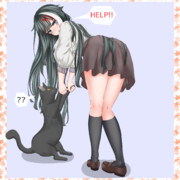 猫の抱き方をしらぬ