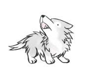 遠吠えする狼