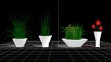 【第三回STONE祭り参加賞】室内用植物シリーズ