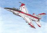 航空自衛隊 F-2A戦闘機 飛行開発実験団501号機