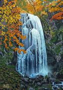 紅葉の小野川不動滝
