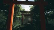 伏見稲荷With霊夢さん