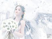 白い花の天使