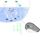 秋刀魚・鰯漁