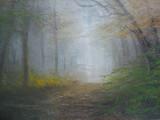 朝霧の小道