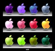 りんご色々。