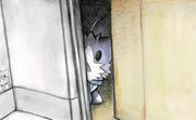 チラッと覗く酒匂猫