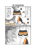 台湾嫁のネコ天国