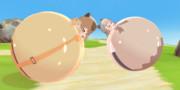 カピバラちゃんとヌートリアちゃんがラテックスボールで遊んでいるようです