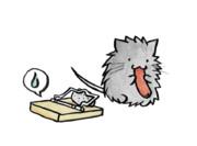罠を回避するネズミ