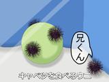 アニメ版 キャベツを食べるウニ