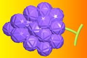 小二十・二十・十二面体のブドウ